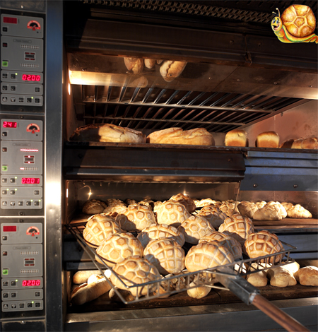 Italian Bread franchising opportunities with Stuzzicando the Italian food industry group that has created the full Italian food franchise business now available in any city of the worldowide food market, traditional homemade pasta, pizza food, bakery bread, fast food italian style, lasagna, ice cream supplying all the cooking and food making equipment necessary to develop your business and market, Stuzzicando The Italian food franchise network